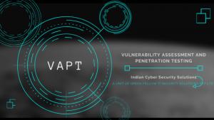 VAPT Service